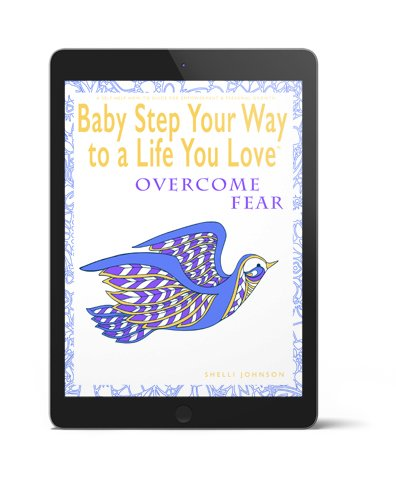 Baby Step Your Way To A Life You Love 3D Overcome Fear